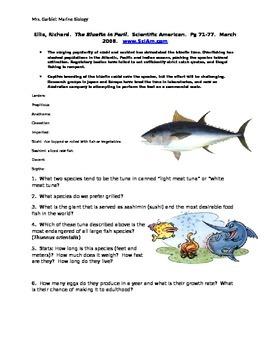 Bluefin in Peril Reading Worksheet