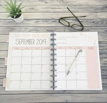Blushing Pink Editable Teacher Binder / Lesson Planner 2017-18