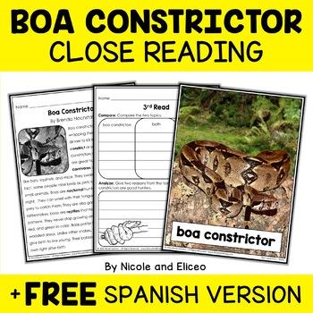 Close Reading Boa Constrictor Activities