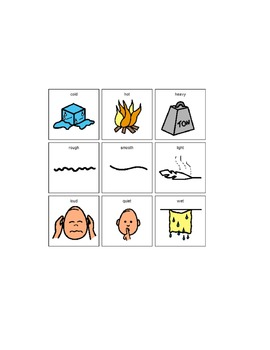 Boardmaker Printable Attribute Categorization Activity