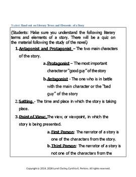 Bobbie vs. Girls {accidentally} Literature and Grammar Unit