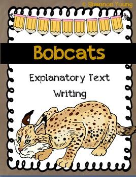 Bobcat Explanatory Text Writing