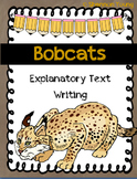 Bobcat Explanatory Text Writing