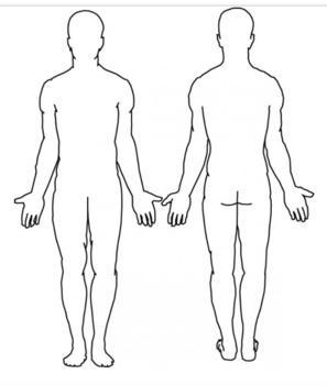 Body Biography - Learning Characterization (Mini-Project)