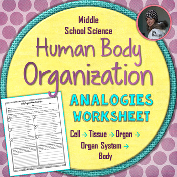 Analogies Worksheets Teaching Resources Teachers Pay Teachers