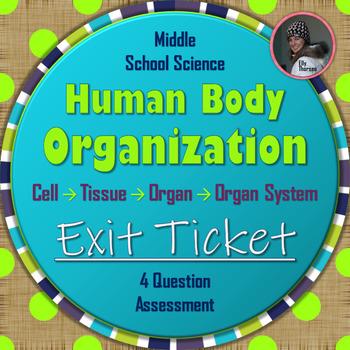 Human Body Organization Exit Ticket