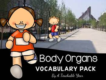 Body Organs- Vocabulary Pack