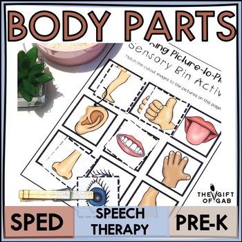 Body Part Mini-Bundle