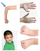 Body Part Pics - Tact or Receptive Language