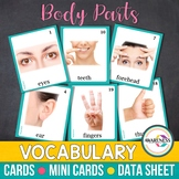 Body Parts Flashcards: Photo Cards Vocabulary for Speech Therapy, Autism and ESL