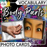 Body Parts Vocabulary Flashcards (Speech Therapy, Special Education, ESL, etc.)