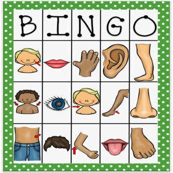 body parts bingo in spanish by bilingual classroom resources tpt. Black Bedroom Furniture Sets. Home Design Ideas