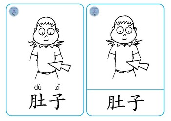 Body Parts Chinese Flashcards - 身体字卡
