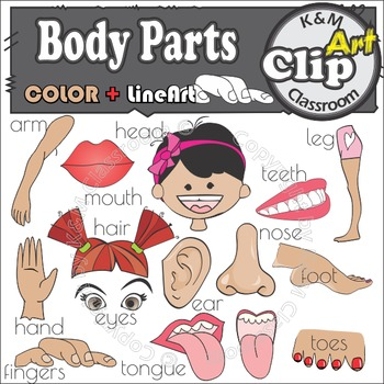 Body Parts - Clip Art & Line Art