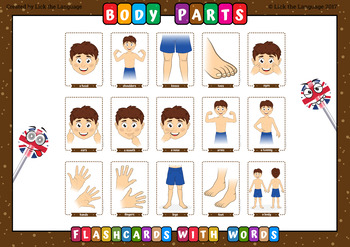 Body Parts - English Flashcards