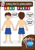 Body Parts - English Flashcards