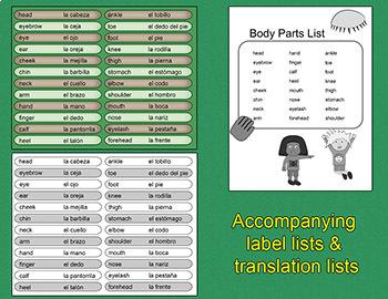 Body Parts - English & Spanish