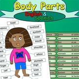 Body Parts - English & Spanish