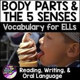 Body Parts & Five Senses Vocabulary for Beginning ELLs