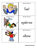 Body Parts Flash Cards,  Parts of the Body Flash Cards, Body Flashcards