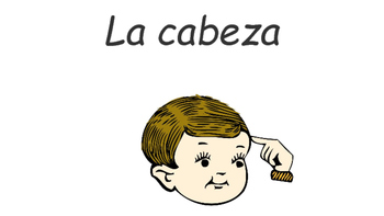 Body Parts Labeling (Spanish and English labels included)