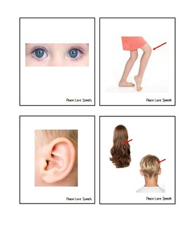 Body Parts Picture Cards