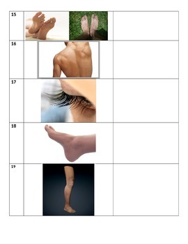 Body Parts Quiz, Part 1--words 1-18
