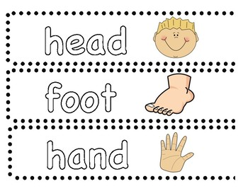 Body Parts Word Cards