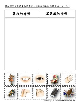 Body Pre-K/K Pack (Traditional Chinese)