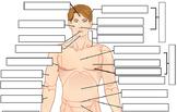 Body Regions Labeling (KEY)