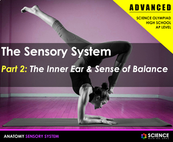 Body Senses - The Inner Ear and Equilibrium