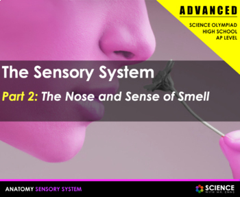 Body Senses - The Nose and Smell
