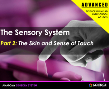 Body Senses - The Skin and Touch