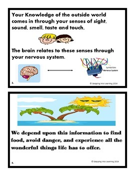 Body Senses and Emotions