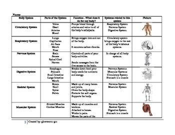 Body System Chart