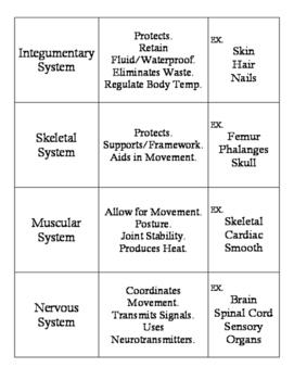 Body System: Card Sort