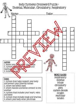 Body System Crossword Puzzles (circulatory, respiratory, m