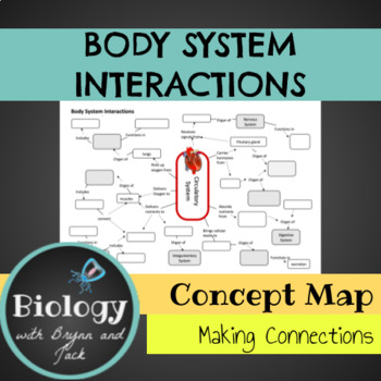Body System Interactions: Concept Map
