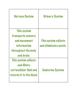 Body System Poster/Matching Cards