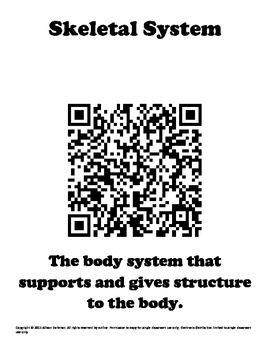 Body System QR Code Sort