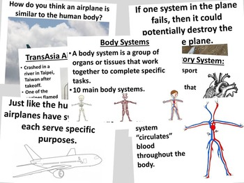 Introduction to Body Systems