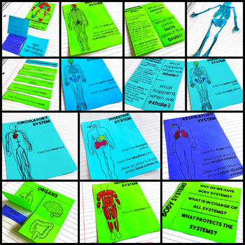 Body Systems Health Interactive Notebook