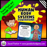 Human Body Systems Activities (Human Body System PowerPoint)