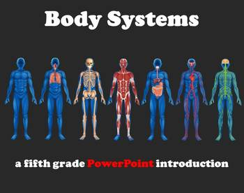 Body Systems – A Fifth Grade PowerPoint Introduction