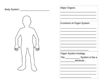 Body Systems Activity Book