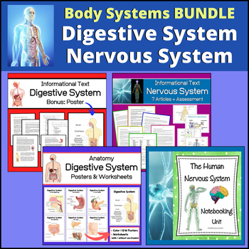 Body Systems Bundle | Digestive System and Nervous System