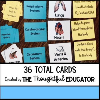 Body Systems Card Sort Activity & Notes Chart