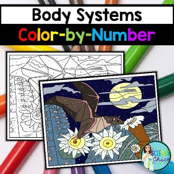Body Systems Color-by-Number