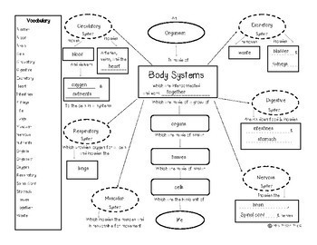 Concept Map: Body Systems {Review of MS-LS1-3}
