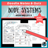 Human Body Systems Graphic Organizer, Quiz, & PPT